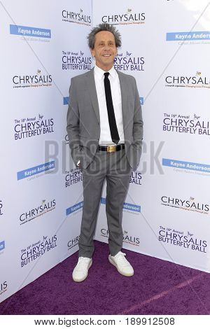 LOS ANGELES - JUN 3:  Brian Grazer at the 16th Annual Chrysalis Butterfly Ball at the Private Estate on June 3, 2017 in Los Angeles, CA