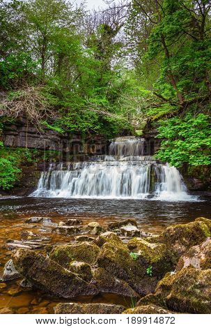 Cotter Force portrait - Cotter Force is a small waterfall on Cotterdale Beck a minor tributary of the River Ure near the mouth of Cotterdale a side dale in Wensleydale North Yorkshire