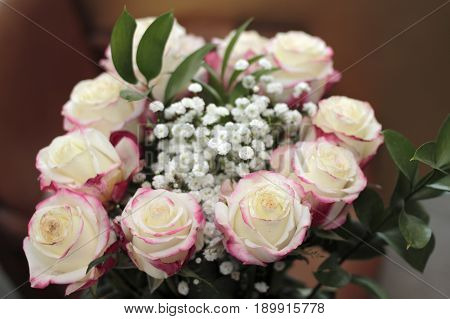 Beautiful bouquet of white roses with small amounts of red pink color the edges. Close-up floral arrangement of white pink roses babys breath and leaves