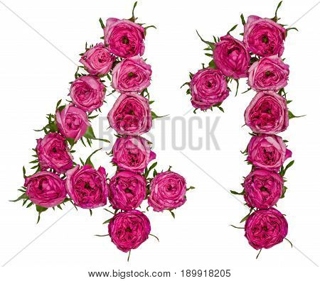 Arabic Numeral 41, Forty One, From Red Flowers Of Rose, Isolated On White Background