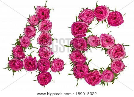 Arabic Numeral 46, Forty Six, From Red Flowers Of Rose, Isolated On White Background