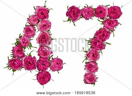 Arabic Numeral 47, Forty Seven, From Red Flowers Of Rose, Isolated On White Background