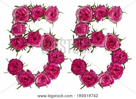 Arabic Numeral 55, Fifty Five, From Red Flowers Of Rose, Isolated On White Background
