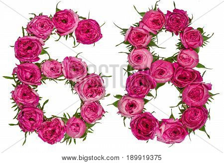 Arabic Numeral 68, Sixty Eight, From Red Flowers Of Rose, Isolated On White Background