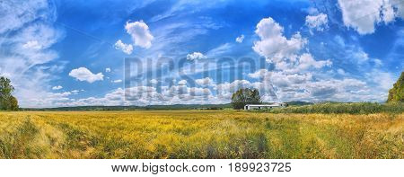 Panoramic view on yellow gold wheat fields, white granary, romantic blue sky heaven, clouds. Yellow golden wheat fields. Panorama Spain holidays vacation best famous sightseeing tours trip travel