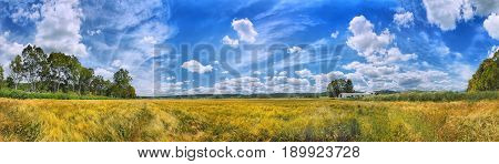 Panoramic view on yellow gold wheat fields, white granary, romantic blue sky heaven, clouds. Panorama Spain holidays vacation best famous sightseeing tours trip travel