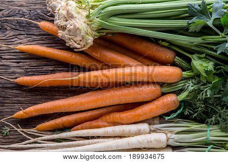 Carrot parsnip celery. Celery carrot and parsnip on rustic oak table