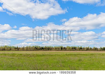 Spring landscape with field forest and clouds in the sky