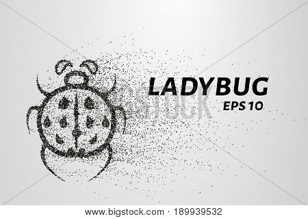 Ladybug Of Particles. Ladybug Is Made Of Circles And Dots. Vector Illustration.