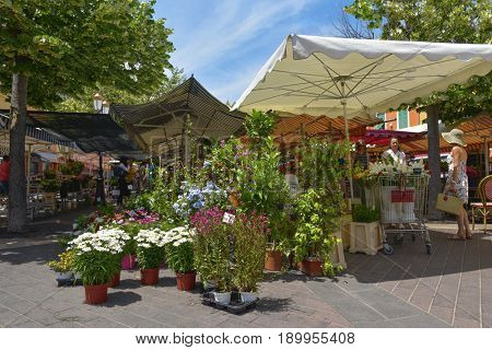 NICE, FRANCE - JUNE 4, 2017: A view of the Marche aux Fleurs, the famous flower market held Tuesday through Sunday at the Cours Saleya, in the Old Town of Nice, France
