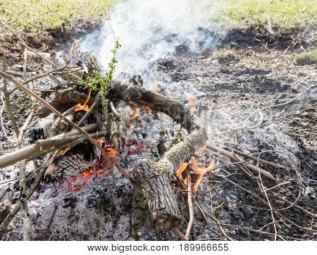 Outdoor brush fire with smoke, branches, and embers. Clearing land for gardening, burning debris
