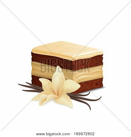 Vanilla cake isolated on white background. Vanilla flower and pods. White chocolate piece of cake.