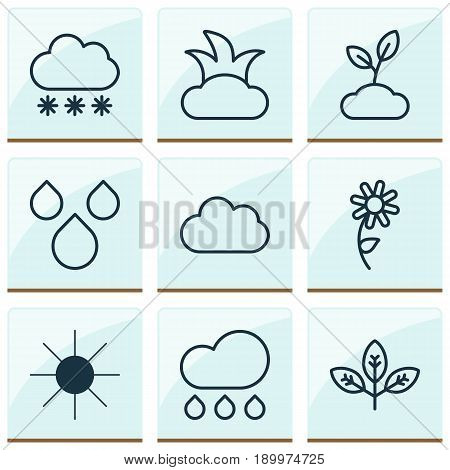 Ecology Icons Set. Collection Of Cloud, Snowstorm, Sunshine And Other Elements. Also Includes Symbols Such As Sunshine, Sprout, Shrub.