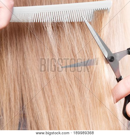 Woman Cutting Down Smoothy Hair.