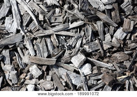 Gray and black Bark wood chippings mulch as an abstract coarse background texture.