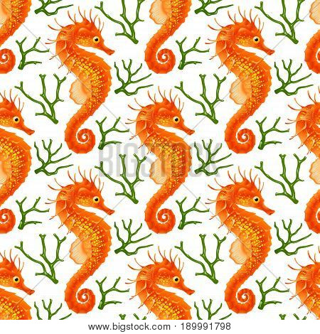Vector Seamless Pattern whith Seahorse. Red Thorny Hippocampus and Green Coral Isolated on White Background. Use for Sea Wallpaper Gift Wrap or Wrapping Paper