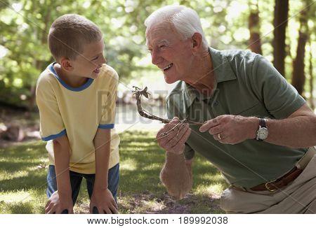 Caucasian man and grandson examining caterpillar