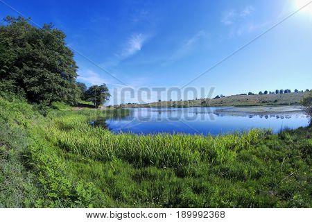 marsh grass of Biviere Lake in Nebrodi Park, Sicily