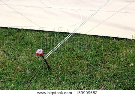 Modern steel and plastic tent stake or rock peg hammered into the grass attached to a guy rope