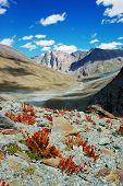 Himalayan scenic along Padum Trek, Ladakh, India. poster