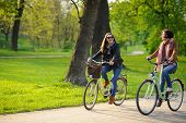 Two young women ride bikes in the spring park. Gentle spring greens yellow dandelions clean air. Pleasure by nature and movements. Healthy lifestyle. poster