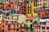 Colourful texture of Manarola city of Cinque Terre - Italy. poster