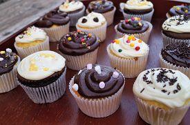 Chocolate and Vanilla Cupcakes. Homemade decorated chocolate and vanilla cupcakes on natural dark wood serving tray