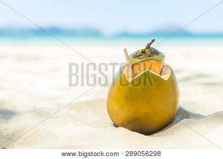 Fresh Young Coconut Lying On The Sand Beach Background With Straw Ready For Drink.