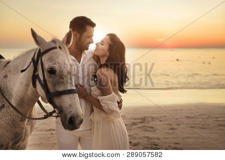 Handsome couple walking with horse on the beach, on sunset