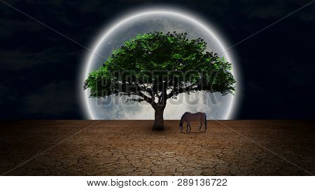 Surrealism. Horse grazes near green tree in arid land. Oasis of life. Full moon at the horizon. 3D rendering