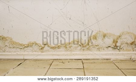 Big Wet Spots And Cracks And Black Mold On The Wall Near Flour In Domestic House Room After Heavy Ra