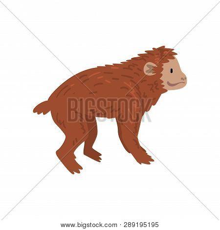 Ape, Monkey Animal Progress, Evolutionary Process Of Woman Vector Illustration