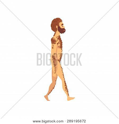 Male Neanderthal, Biology Human Evolution Stage, Evolutionary Process Of Woman Vector Illustration
