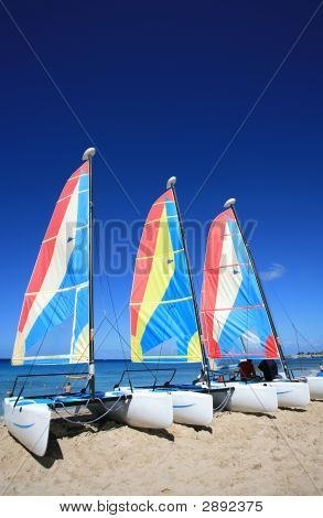 Three Catamarrans