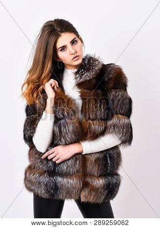 Female Brown Fur Coat. Fur Store Model Posing In Soft Fluffy Warm Coat. Pretty Fashionista. Fur Fash