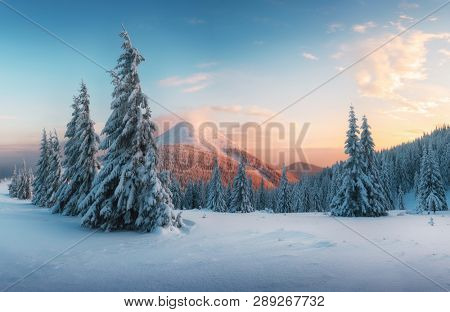 Fantastic orange sunset in snowy mountains. Picturesque winter scene with snowy trees and glowing mountain peak