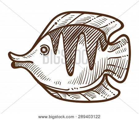 Fish Flounder Isolated Sketch Underwater Animal With Flippers