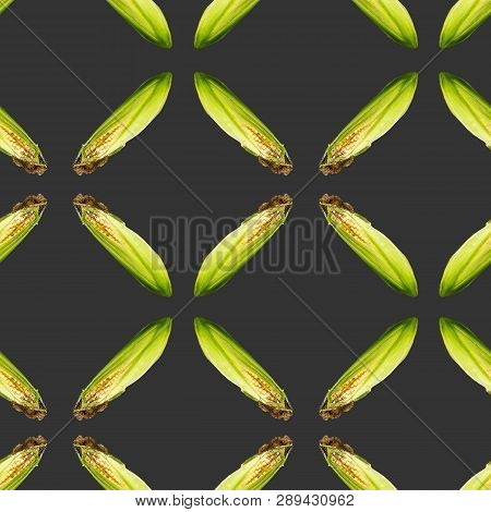 Raster Seamless Pattern. Corn From Which They Make Silage For Livestock On The Farm. Green Backgroun