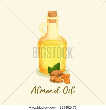 Glassware Bottle With Almond Oil. Nuts Near Jar With Yellow Liquid. Cooking Or Massage Ingredient Cl