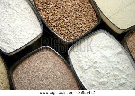 Dry Food