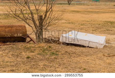 Discarded mattress next to small tree and hand surface roller in public park on winter day. poster