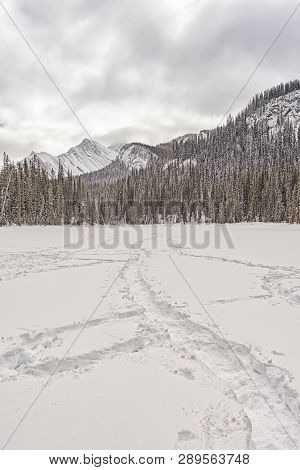 Landscape Of Tracks On A Snow Covered Lake In The Canadian Rocky Mountains.