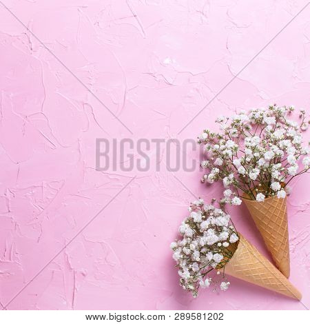 Tender Fresh White Gypsofila  Flowers In Waffle Cones On  Pink Textured Background. Top View. Place