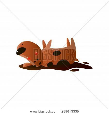 Wallows Images, Illustrations & Vectors (Free) - Bigstock