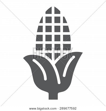 Corn Glyph Icon, Farm And Harvest, Sweetcorn Sign, Vector Graphics, A Solid Pattern On A White Backg