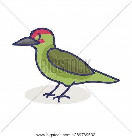 Cute Woodpecker Cartoon Vector Illustration Motif Set. Hand Drawn