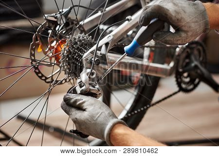 Cropped Shot Of Male Mechanic Working In Bicycle Repair Shop, Mechanic Repairing Bike Using Special