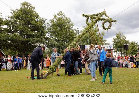 Mariefred, Sweden - June 22, 2018: A Group Of People Erecting The Midsummer Pole At The Public Celeb