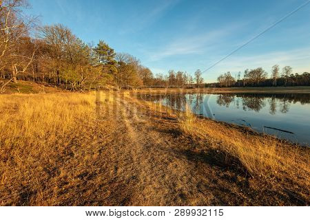Small Lake In The Low Light Of The Setting Sun. The Photo Was Taken In The Dutch Nature Reserve Bosw