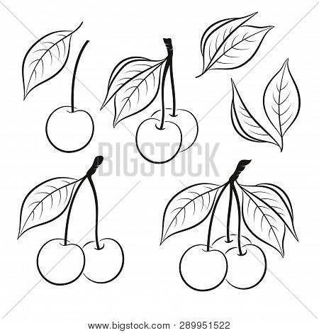 Set Of Cherry, Berries And Leaves, Black Pictograms Isolated On White. Vector